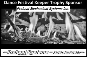 pro heat mechanical systems